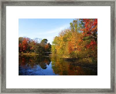 Fall In Lakewood II Framed Print by Roger Becker