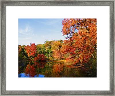 Fall In Lakewood IIi Framed Print by Roger Becker