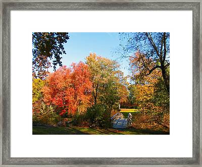 Fall In Lakewood Framed Print by Roger Becker