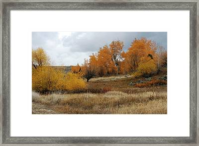 Fall In Montana Framed Print by Larry Stolle