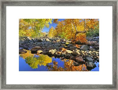 Fall In Oak Creek  Framed Print by Dan Myers