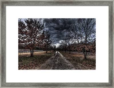 Fall Journey Framed Print by Bill Cantey