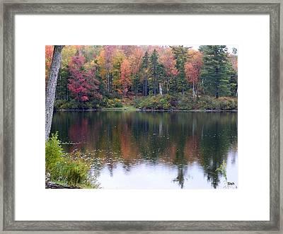 Fall Lake Reflection Framed Print by Sandra J Isherwood