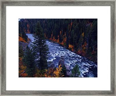 Fall Lined River Framed Print by Raymond Salani III