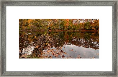 Fall Memories Framed Print by Lourry Legarde