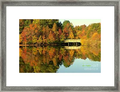 Fall Mirrored Framed Print by Yvette Radcliffe