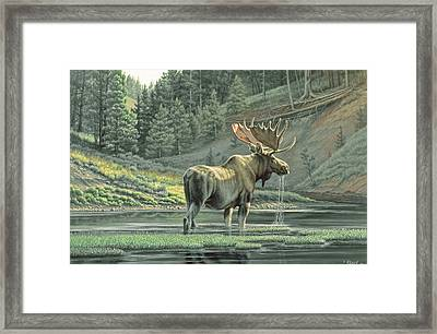 Fall On The Yellowstone Framed Print by Paul Krapf
