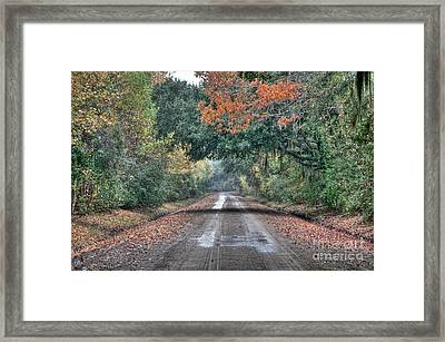 Fall On Witsell Rd. Framed Print by Scott Hansen