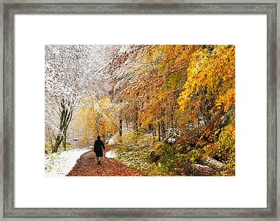 Fall Or Winter - Autumn Colors And Snow In The Forest Framed Print by Matthias Hauser