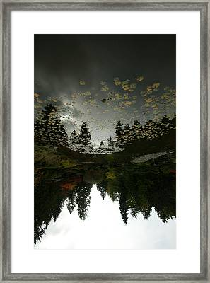 Fall Reflection Framed Print by Jeff Burgess