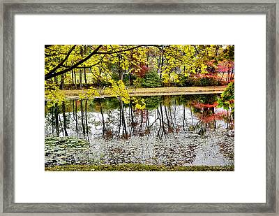 Fall Reflections Framed Print by Brian Wallace