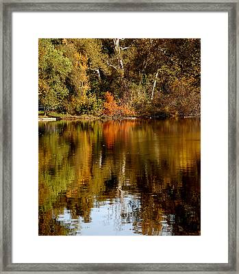 Fall Reflections Framed Print by Holly Blunkall