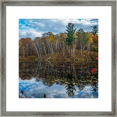 Fall Reflections Framed Print by Paul Freidlund