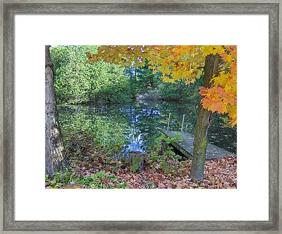 Fall Scene By Pond Framed Print by Brenda Brown