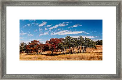 Fall Scene In The Texas Hill Country - Reimers Ranch Hamilton Pool Road - Texas Framed Print by Silvio Ligutti