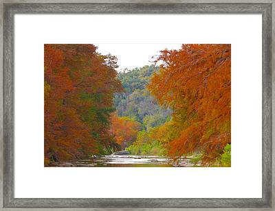 Fall Spectacular Framed Print by David  Norman