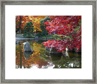Fall Splendor - Digital Painting Framed Print by Carol Groenen