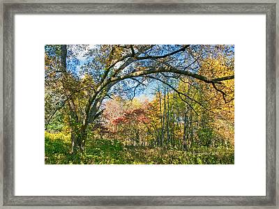 Framed Print featuring the photograph Fall Tapestry Of Colors And Textures by A Gurmankin