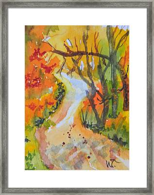 Fall Trail Framed Print by Warren Thompson