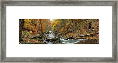 Fall Trees Kitchen Creek Pa Framed Print by Panoramic Images
