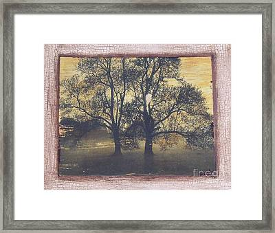 Fall Trees Framed Print by Leslie Jennings