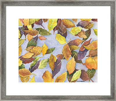 Fallen Leaves Framed Print by Anne Gifford