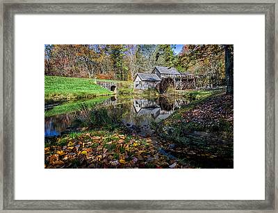 Fallen Leaves At Mabry Mill Framed Print by Lori Coleman