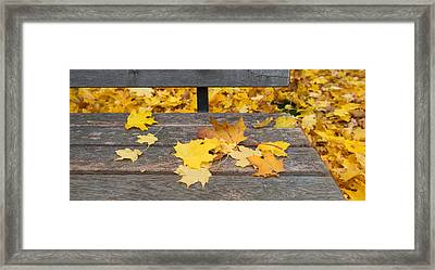 Fallen Leaves On A Wooden Bench Framed Print by Panoramic Images