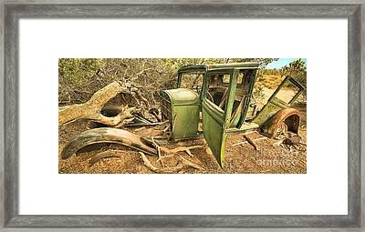 Falling Apart At Joshua Tree Framed Print by Adam Jewell