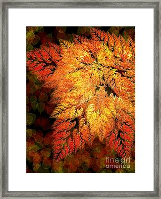 Falling Into Autumn Abstract Framed Print by Andee Design