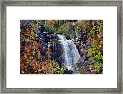 Falls In Fall Framed Print by Lydia Holly