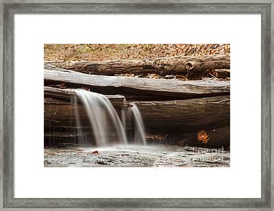 Falls Through A Tree Framed Print by Darleen Stry