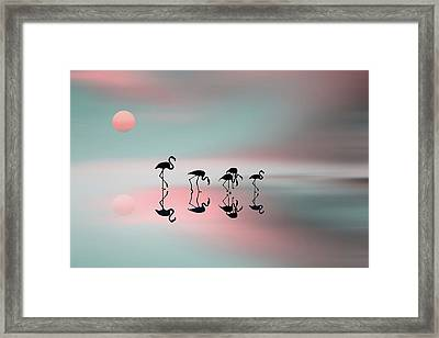 Family Flamingos Framed Print by Natalia Baras