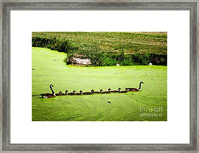 Family Outing Framed Print by Gerlinde Keating - Galleria GK Keating Associates Inc