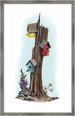 Family Tree Framed Print by Dana Alfonso