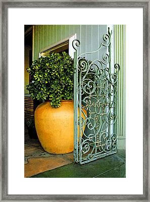 Fancy Gate And Plain Pot Framed Print by Ben and Raisa Gertsberg
