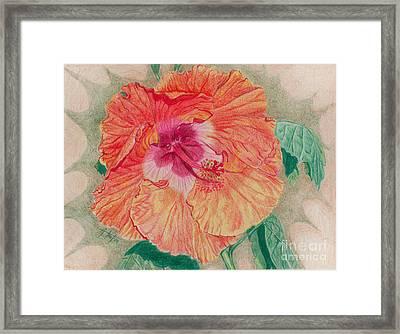 Fancy Hibiscus Framed Print by Audrey Van Tassell