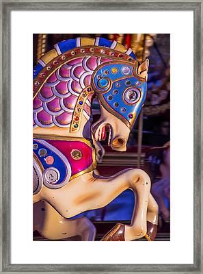 Fancy Horse Framed Print by Garry Gay