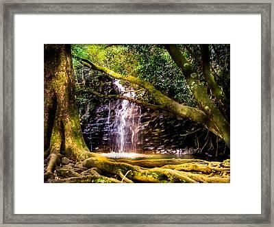 Fantasy Forest Framed Print by Karen Wiles