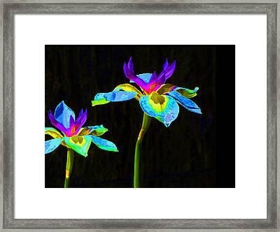 Fantasy Irises 2 Framed Print by Margaret Saheed