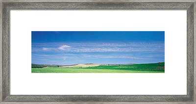 Farm Audausia Cordoba Vicinity Spain Framed Print by Panoramic Images