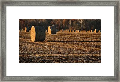 Farm Fields In October Framed Print by Dan Sproul
