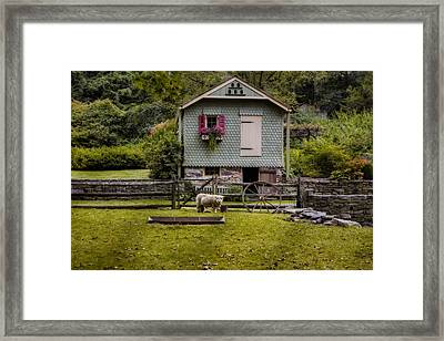 Farm House And Babydoll Sheep Framed Print by Susan Candelario
