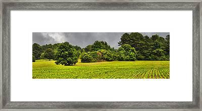 Farm Journal - Hidden History Framed Print by Paulette B Wright