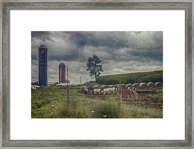 Farm Landscape Framed Print by Kathy Jennings