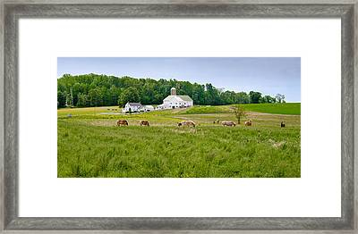 Farm Life Framed Print by Guy Whiteley