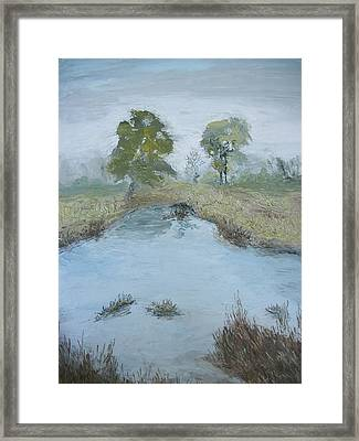 Farm Pond Framed Print by Dwayne Gresham