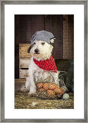 Farmer Dog Framed Print by Edward Fielding