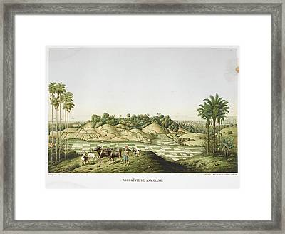 Farmer With Goats And Oxen Framed Print by British Library