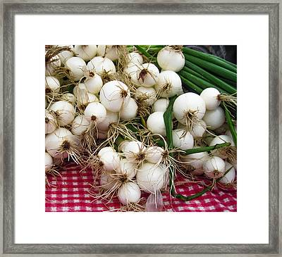 Farmers Market Onions Framed Print by Timothy Johnson